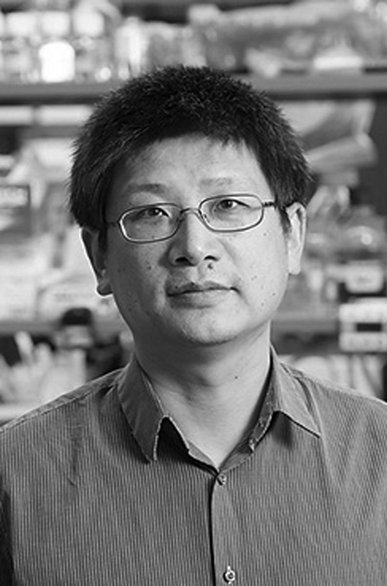 Hongjun Song, PhD